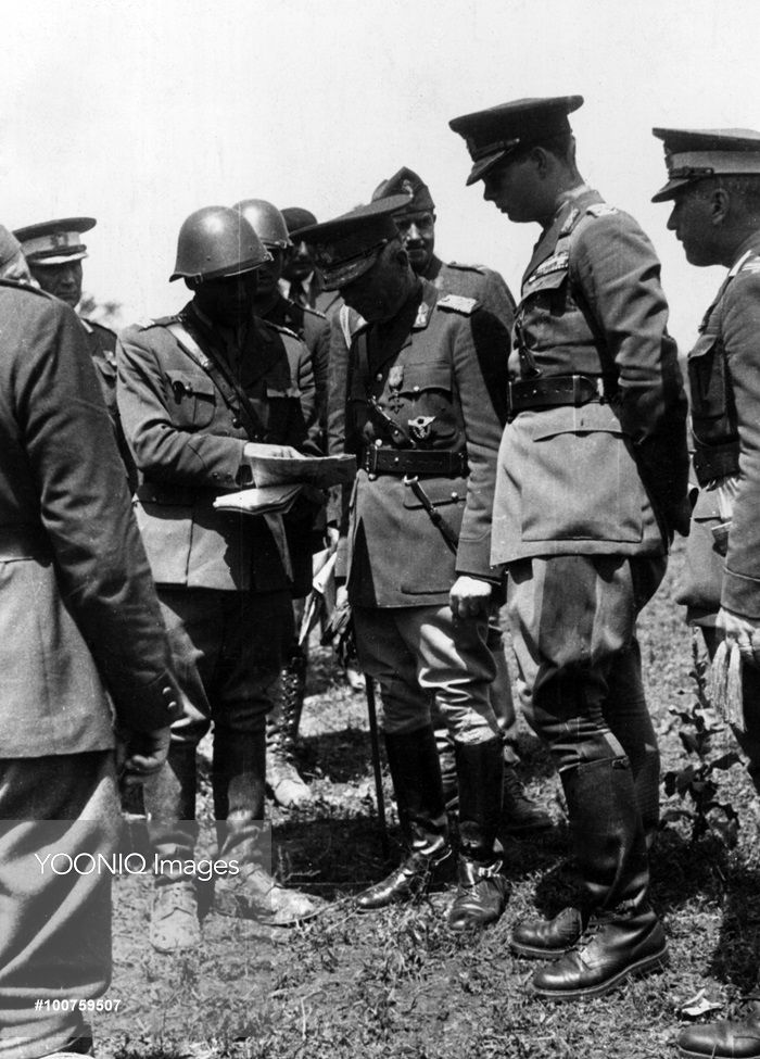 Ion Antonescu and Michael I of Romania during an inspection