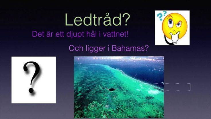 Grej of the day - Blue holes of Bahamas, Felicia T
