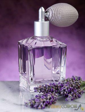 Fragrances to Invigorate Your Senses « eShoesCoupons