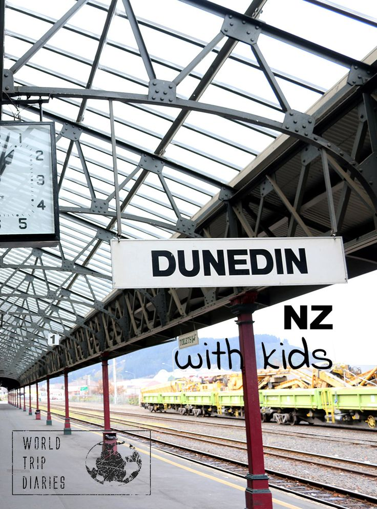 What to do in Dunedin with kids - World Trip Diaries