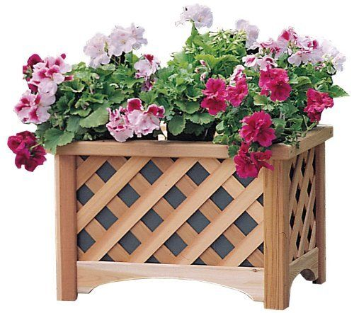 Arboria Windsor Rectangle Planter Box by Arboria. $74.79. The Arboria Windsor Rectangular Cedar Planter is the perfect accessory for adding the beauty of plants to your porch or patio. This graceful lattice-sided planter is made from Western Red Cedar for supreme durability. The Western Red Cedar construction contains natural oils that retard decay while repelling insects and fungus; it also has low shrinking and swelling tendencies and superior ability to hold pa...
