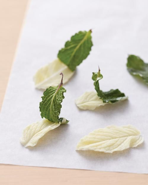 How to make chocolate leaves.