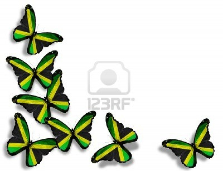 Indian Flag Butterflies: 15 Best Images About Jamaican Nation! On Pinterest