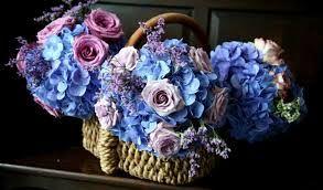 çiçek sepet resmi ile ilgili görsel sonucu