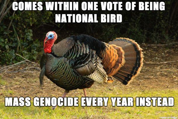 Bad Luck Turkey #meme #luck #turkey #funny #humor #comedy #lol