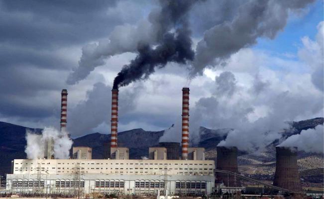"""En su informe """"Planeta Vivo"""", el Fondo Mundial para la Naturaleza (WWF) expone cómo las acciones humanas están empujando la vida salvaje a una extinción masiva"""
