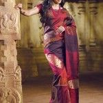 different colour saree for women