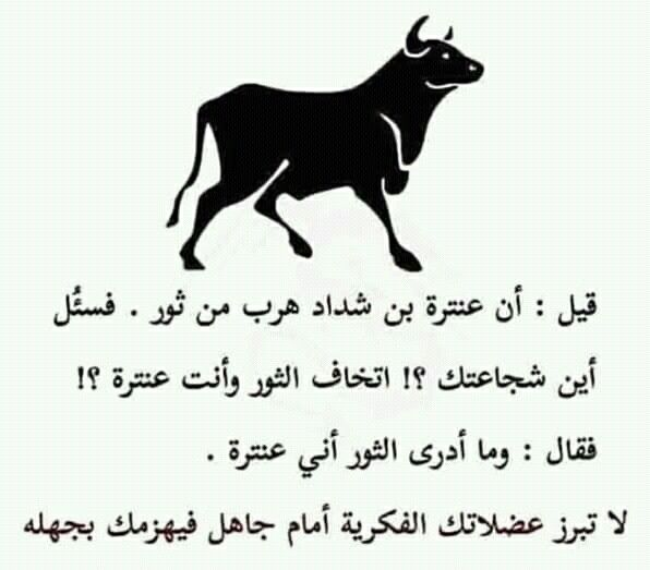 Pin By Yi On فضاء المعنى Funny Arabic Quotes Wisdom Quotes Cool Words