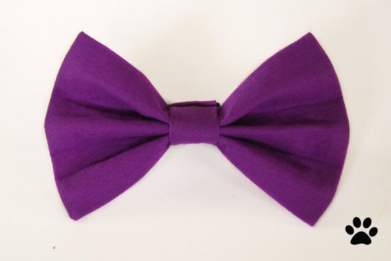 Medium / dark purple  cat bow tie dog bow tie pet bow by RHCpets