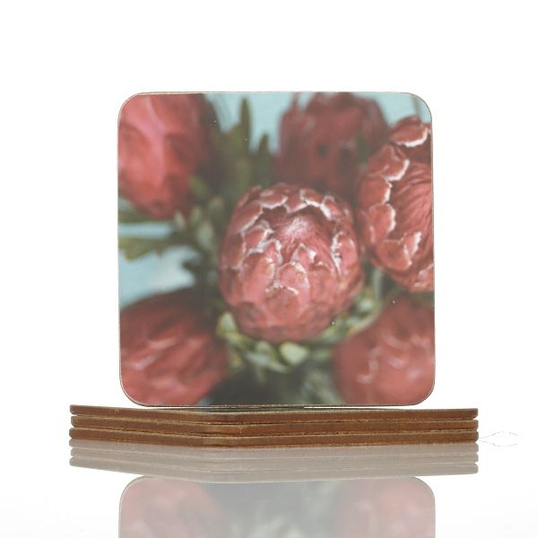 Ed Suter Protea Coasters | R160 | http://bit.ly/1mpdCTK