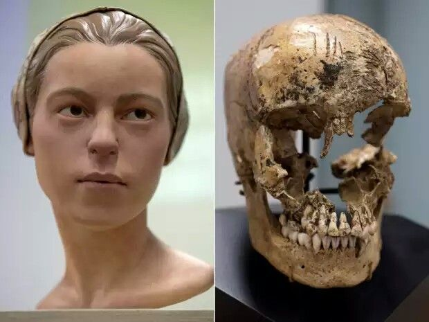 A victim of cannibalism from the Jamestown colony.In 2013, archaeologists revealed they'd found evidence of cannibalism in colonial Jamestown — an indication of just how desperate early colonial life had been. Specifically, they discovered markings on the skull of a 14-year-old girl that strongly indicated she'd been eaten by settlers during the particularly difficult winter of 1609.