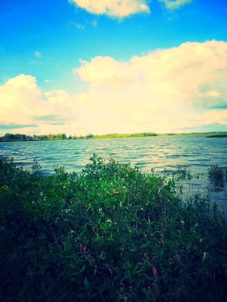 uitzicht op het water in de biesbosch