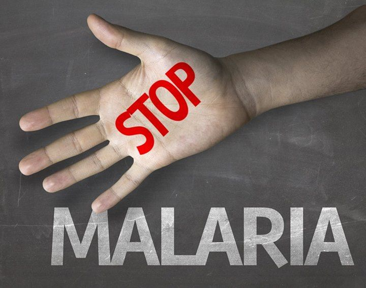 Homeopathy for malaria and other mosquito-borne diseases #homeopathy http://homeopathyplus.com/homeopathy-for-malaria-and-other-mosquito-borne-diseases/?utm_content=bufferaaddf&utm_medium=social&utm_source=pinterest.com&utm_campaign=buffer