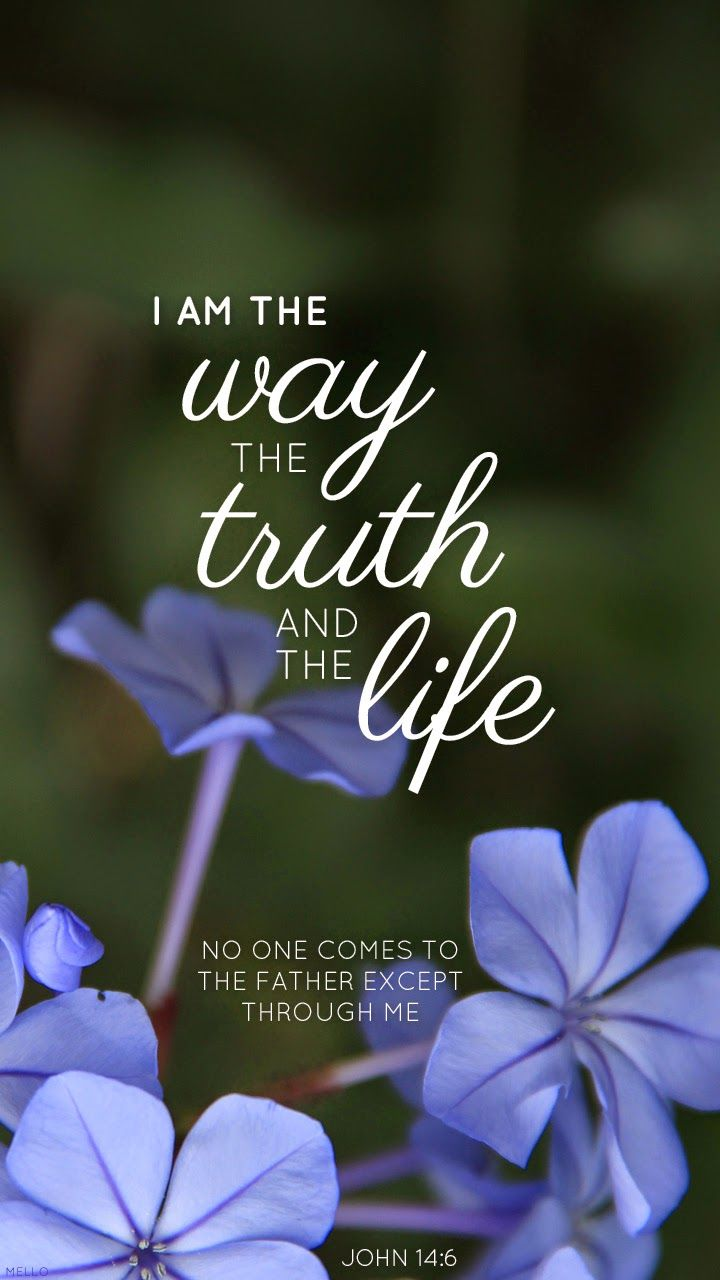 """Jesus said """" I am the way, the truth, and the life. No one comes to the Father except through me.  John 14:6"""