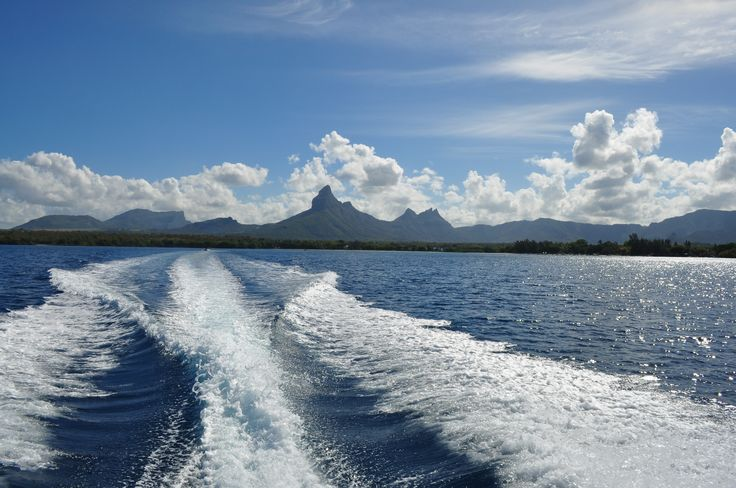 Still Life in Blue - Mauritius.