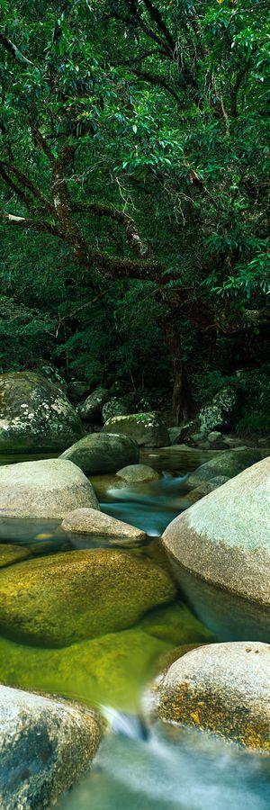 Mossman Gorge - Australia http://www.travelandtransitions.com/destinations/destination-advice/australia-south-pacific/