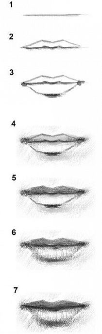 Sieben Schritte um einen Profi Mund  zu malen. Seven steps to draw a mouth.