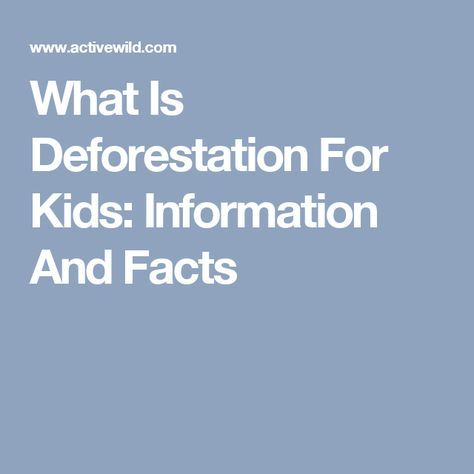 What Is Deforestation For Kids: Information And Facts