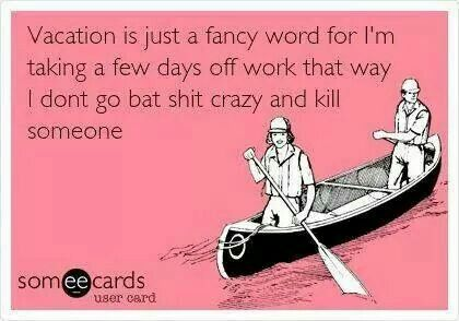 vacation or bat shit crazy ?   b r i l l i a n t   pinterest