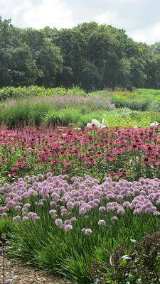 Paul and Pauline McBride, Sussex Prairie Garden.