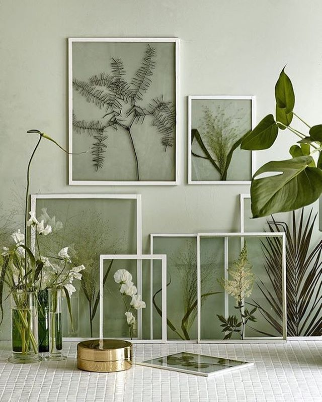Framing dried plants and flowers in clear glass frames #artsxdesign