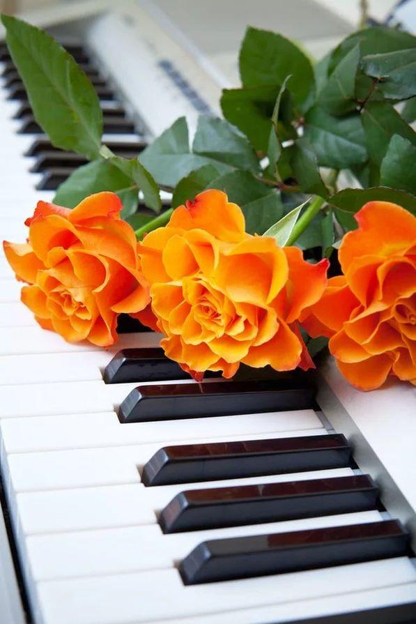 Музыкальная открытка цветочек, февраля поздравления