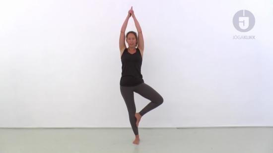 Méregteleníts jógával – Megmutatjuk, hogyan csináld!
