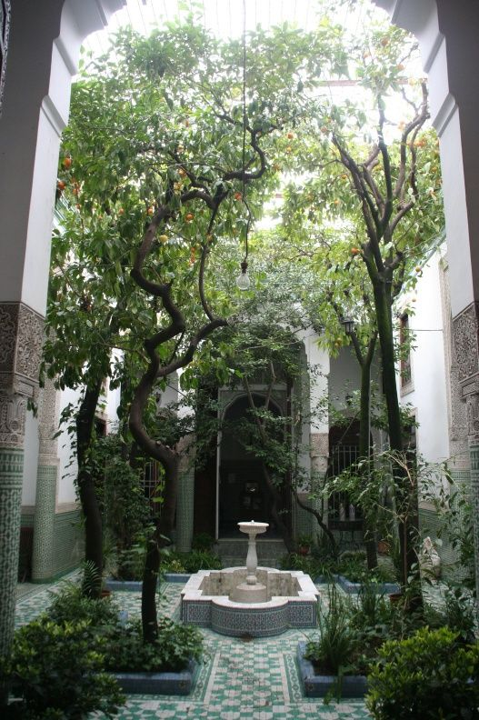 The patio garden from Riad Alif in Fez