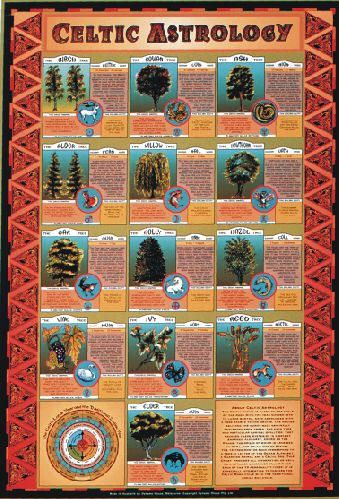 The Celtic zodiac is based on the cycle of the moon with the year divided into 13 lunar months, each associated with a tree considered to be sacred to the Druids.  The 13 tree months each correspond to a tree, a letter of the Ogham alphabet, a guardian animal and a Celtic god.  This chart provides all information, as well as a detailed character analysis for each of the 13 personality types. It is especially interesting to compare the Celtic moon cycles with the traditional zodiac sun cycle.