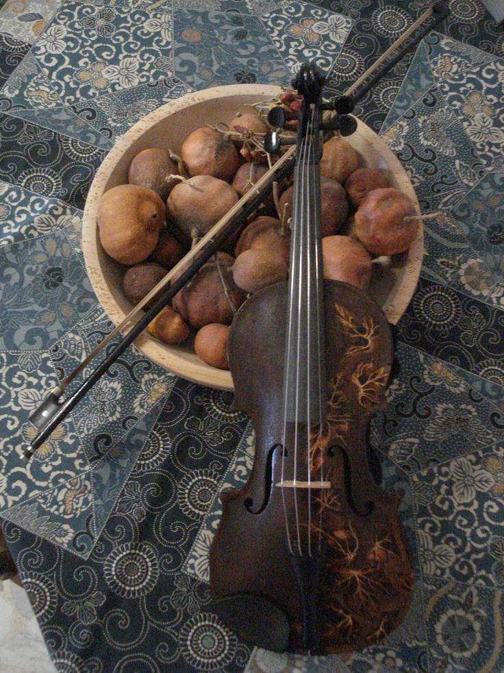 #violino Simone Naldini
