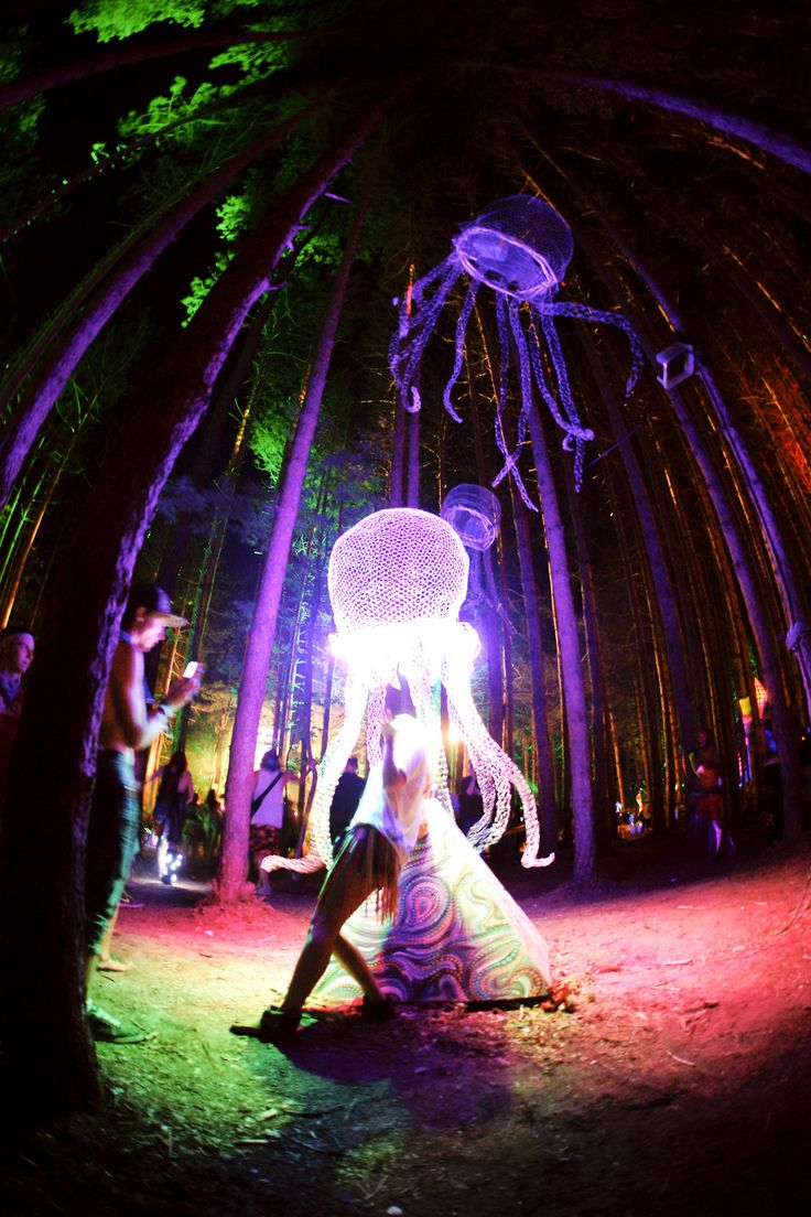 electric forest #edm #insomniacevents