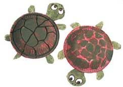 Sköldpaddor av papptallrikar  Paper plate turtles