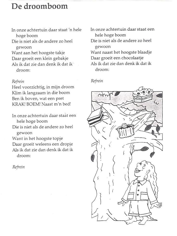 De Droomboom tekst