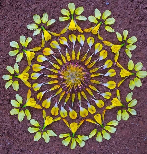 """As mandalas de flores de Kathy Klein As peças são chamadas de """"danmalas"""" (o doador de grinaldas, em sânscrito). Depois de formadas e fotografadas, a artista deixa as mandalas onde as criou, como um..."""