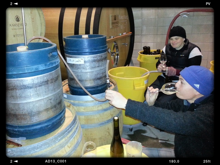 Gewurtz bottling today ... on-going quality control ... two keg total production