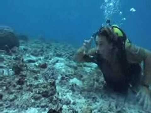 Steve Irwin's Ocean's Deadliest -Part 1