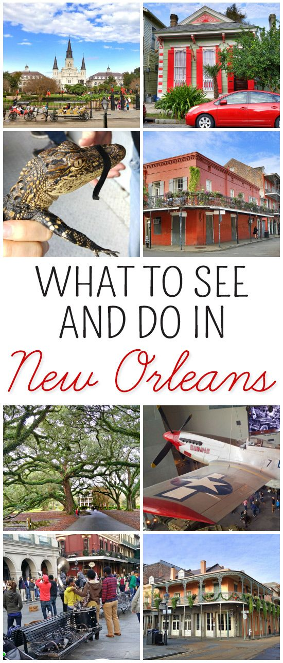 What to See and Do in New Orleans