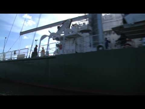 """A Teaser from """"Stories of the Rainbow Warrior"""""""