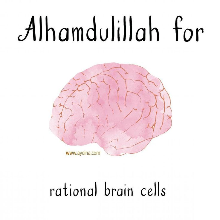 29. Alhamdulillah for rational brain cells. #AlhamdulillahForSeries