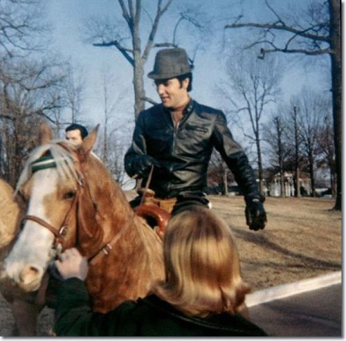 Elvis Presley de 1967 à 1968