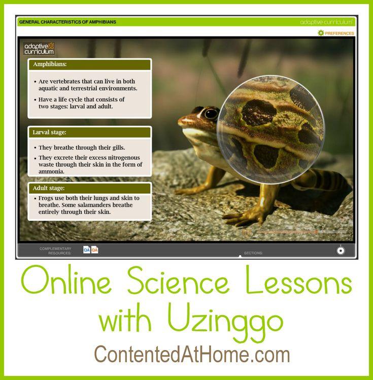Photosynthesis unit study homeschool
