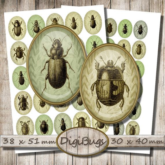 Beetle Digital Collage Sheet, 38 x 51 mm, 30 x 40 mm Ovals, Insect Jewelry Images, Green Shades, Instant Digital Download, DigiBugs, c9