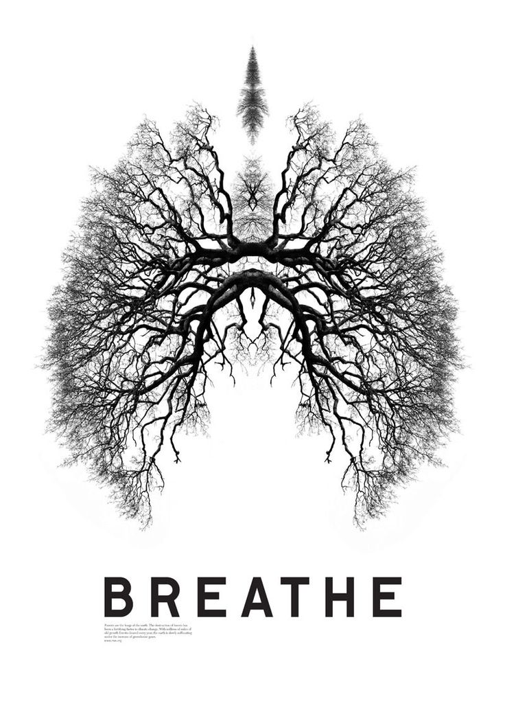 Breathe Poster by Matt Willey Poster produced to raise awareness of the destruction of the Amazon rainforest for the US-based charity Rainforest Action Network (RAN).