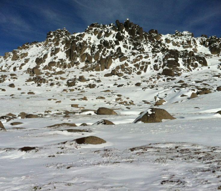 Highest mountain in Australia!