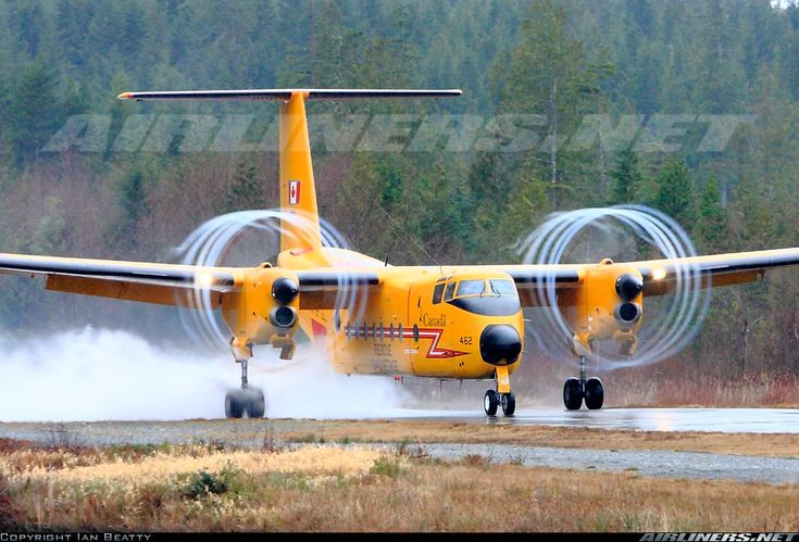 De Havilland Canada CC-115 Buffalo (DHC-5) - Canada - Air Force | Aviation Photo #1655366 | Airliners.net