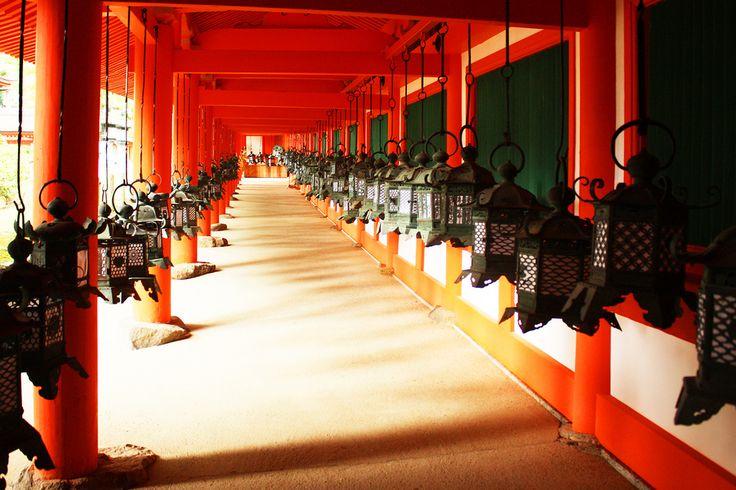 Kasuga Shrine Lanterns- Nara, Japan