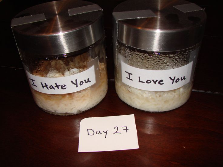 The Power of Positivity - Growth Mindset (rice experiment)