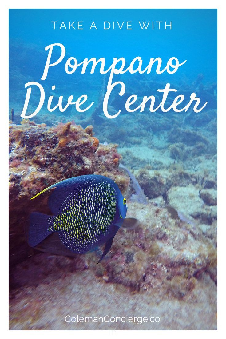 Scuba Diving In Fort Lauderdale With Pompano Dive Center Best Scuba Diving Scuba Diving Scuba