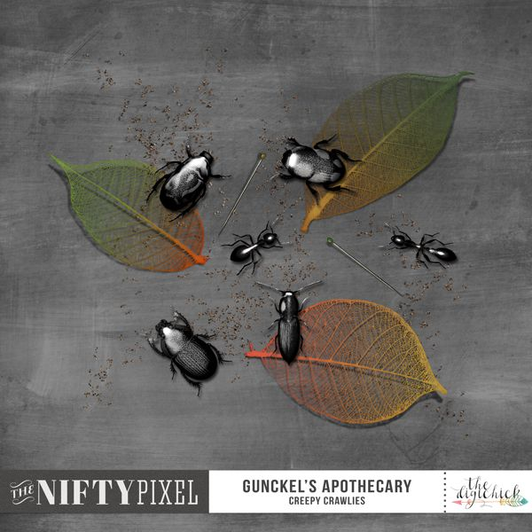 GUNCKEL'S APOTHECARY | Creepy Crawlies Look at these creepy crawlies! They are nifty lil' additions to any of your Halloween inspired projects. The scattered leaf matter, dirt spills and entomology mounting pins make this pack really versatile...perfect for all those garden, outdoors inspired themes too.   DOWNLOAD INCLUDES:  6X Dimensional insects. 3X Skeleton Leaves [shadowed versions included] 3X Dirt Spills 2X Mounting Pins