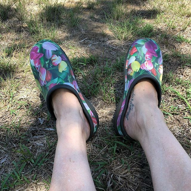 Spent the day working in the paddock. Do you like my gardening shoes?  . . #countrygirl #countrylife #hardwork #saturdaythings #authorsofinstagram